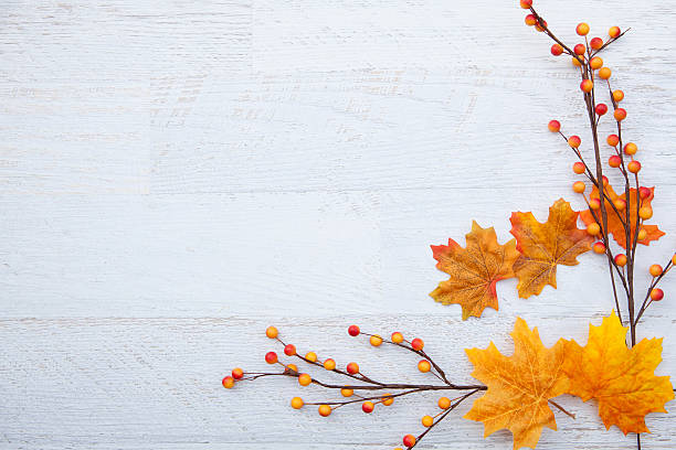 Autum Thanksgiving Background Autumn Thanksgiving BackgroundAutumn Thanksgiving Background november stock pictures, royalty-free photos & images