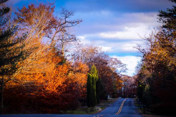Autumn Afternoon stock photo