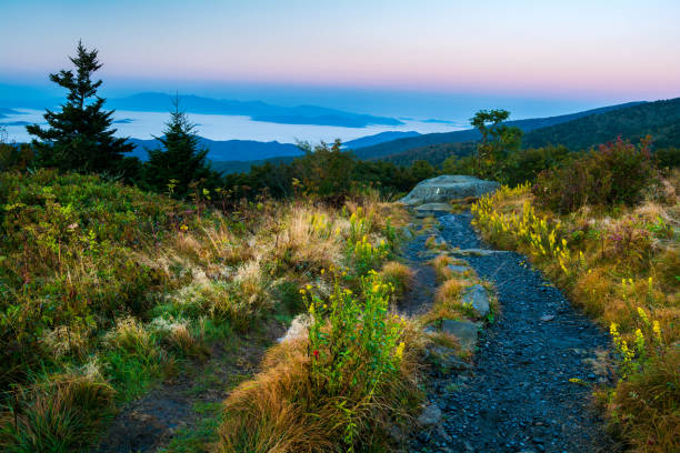 Autumn Along the Appalachian Trail Autumn color along the Appalachian Trail in the Roan Highlands. appalachian trail stock pictures, royalty-free photos & images