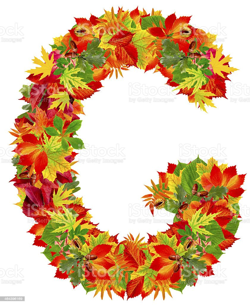 G, autumn alphabet royalty-free stock photo