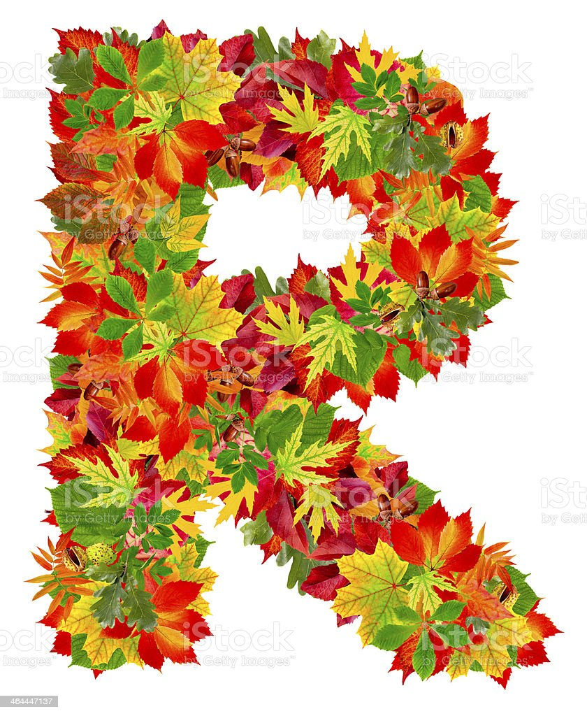 R, autumn alphabet royalty-free stock photo