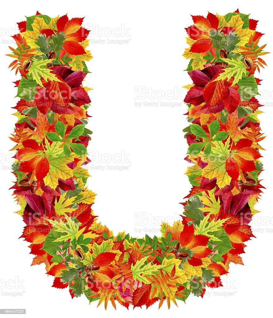 U, autumn alphabet royalty-free stock photo
