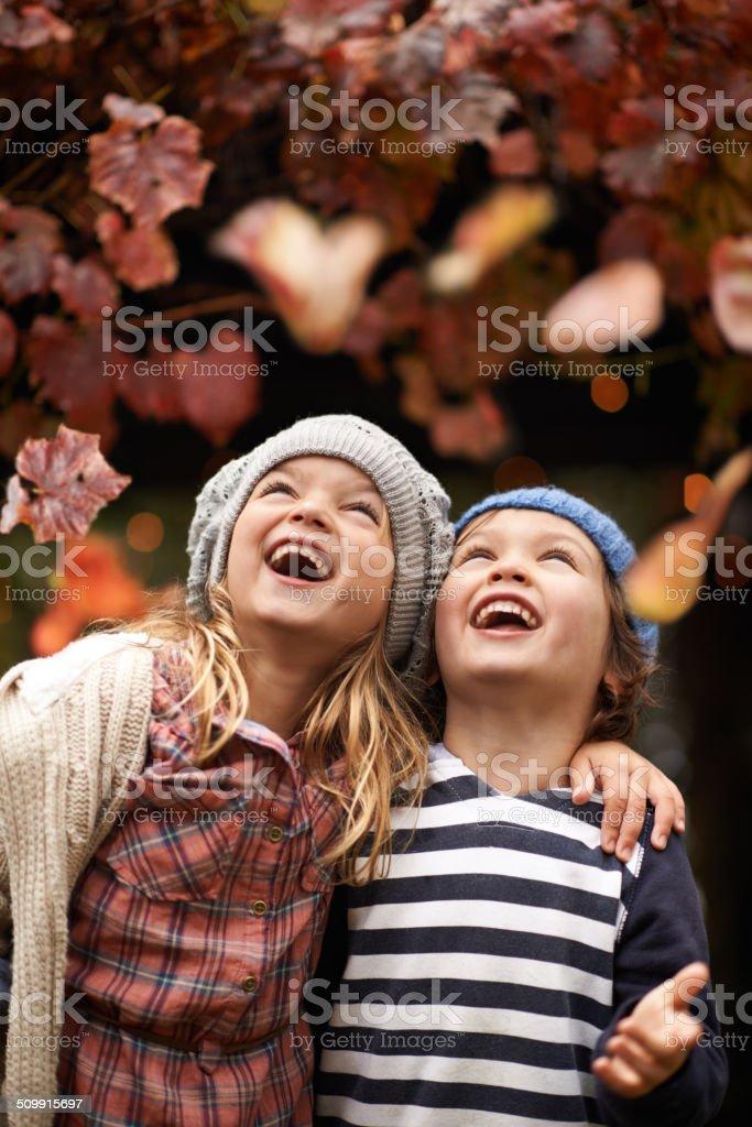 Autumn amusements stock photo