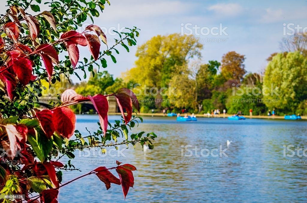 Autumn and recreation at Hyde Park stock photo