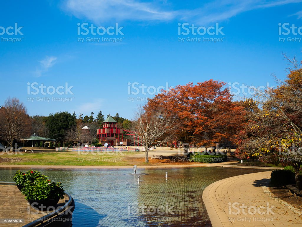Autumn Andersen Park ストックフォト