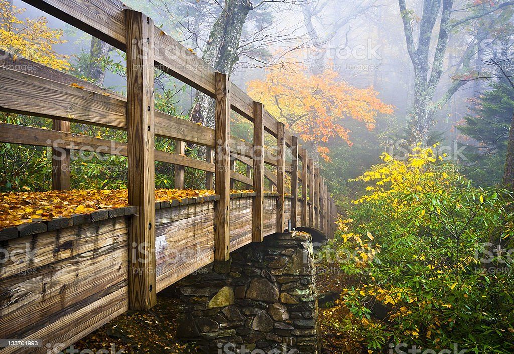 Autumn Appalachian Hiking Trail Foggy Nature Blue Ridge Fall Foliage stock photo