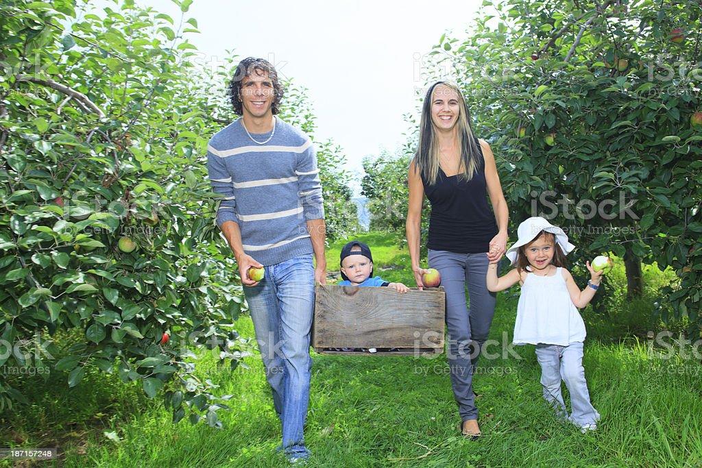Autumn Apple - Family Activities royalty-free stock photo