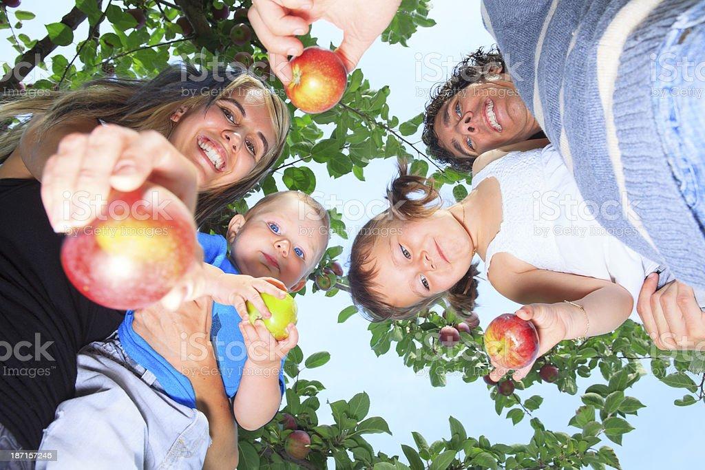 Autumn Apple - Family Show royalty-free stock photo