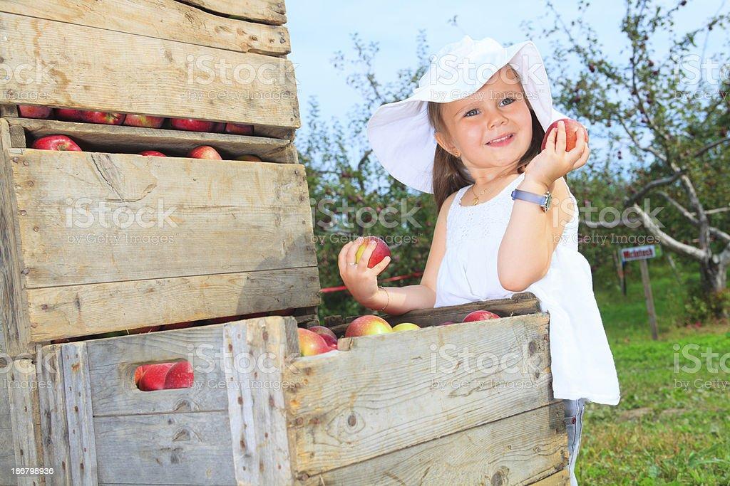 Autumn Apple - Girl Holding royalty-free stock photo