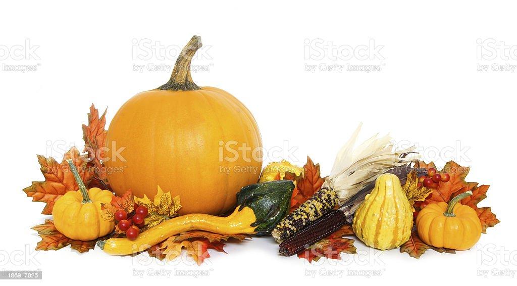 Autumn arrangement of pumpkins, corn and guords stock photo