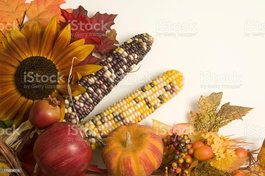 Autumn arrangement-3 royalty-free stock photo