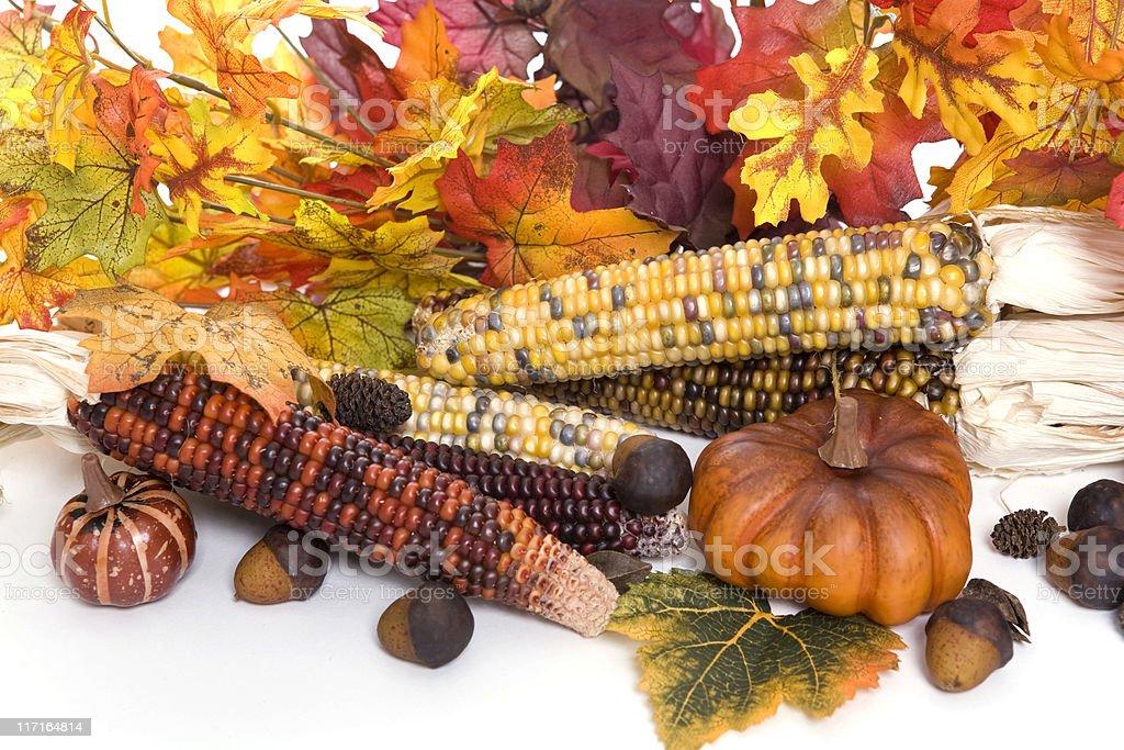 Autumn Arrangment royalty-free stock photo