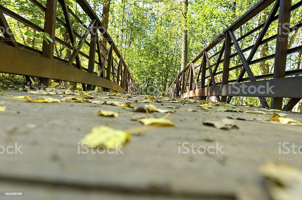 Autumn Aspen Leaves on Scenic Pedestrian Bridge stock photo
