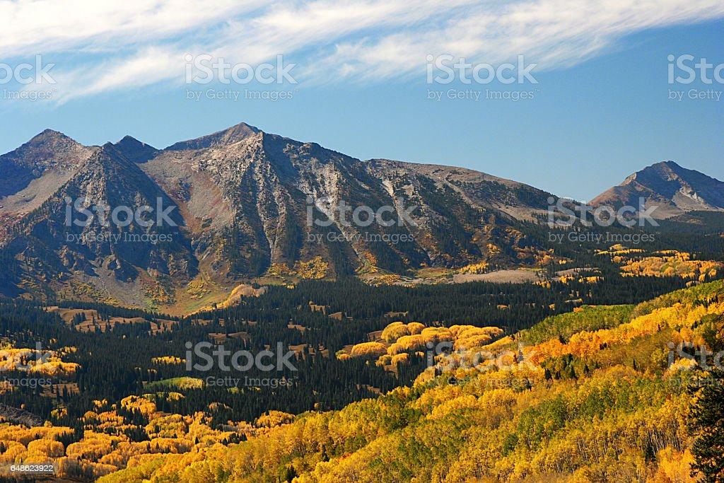 Autumn aspens near Kebler Pass  in Colorado stock photo