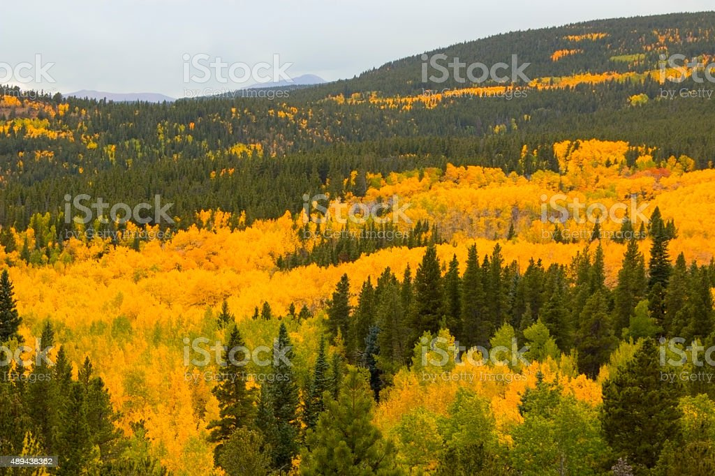 Autumn at Brainard Lake and the Indian Peaks stock photo