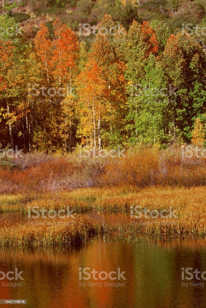 Autumn At Convict Lake stock photo