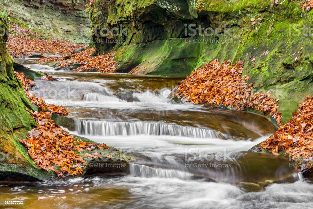 Autumn at Fall Creek Gorge royalty-free stock photo