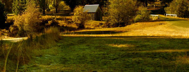 Autumn at Hill End_100x38 stock photo