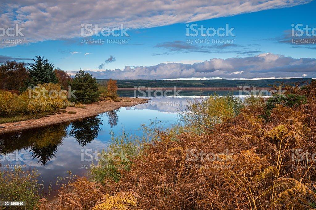 Autumn at Kielder Water stock photo