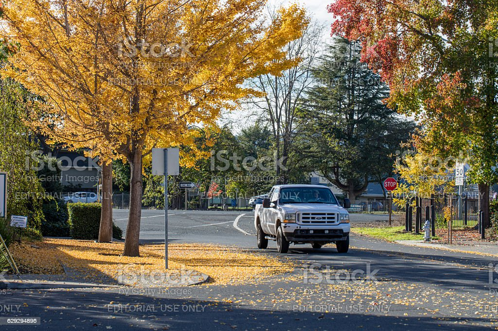 Autumn at Napa resident area , Napa, California stock photo