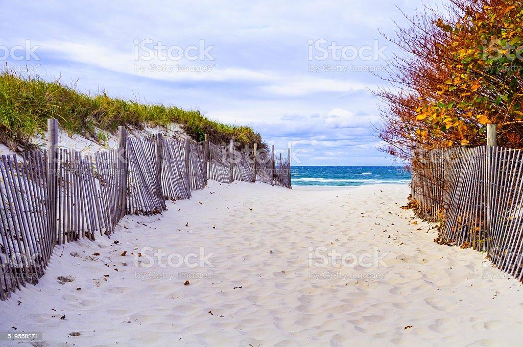 Autumn at the Beach stock photo