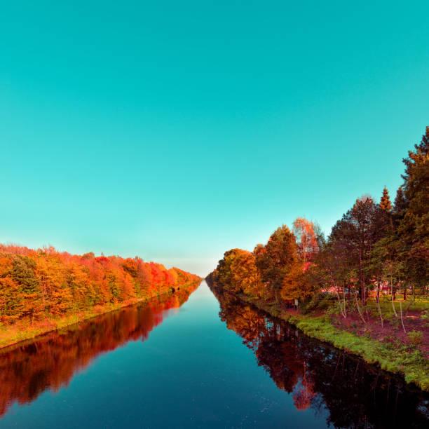 herfst op het kanaal hunte - vogel herfst stockfoto's en -beelden