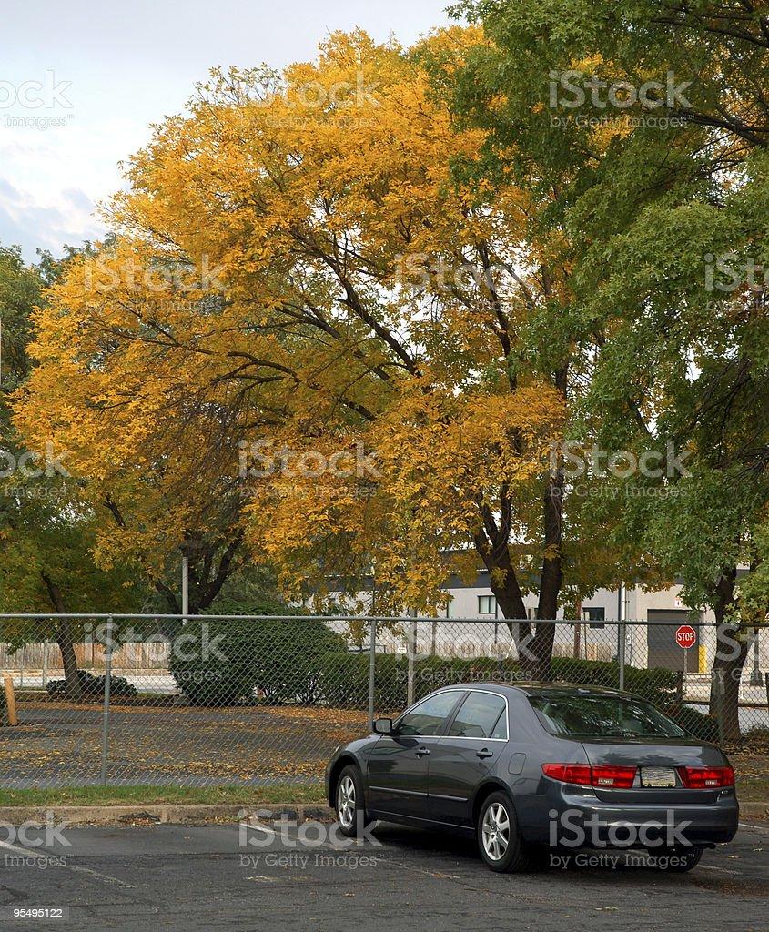 Autumn at the Neighborhood stock photo