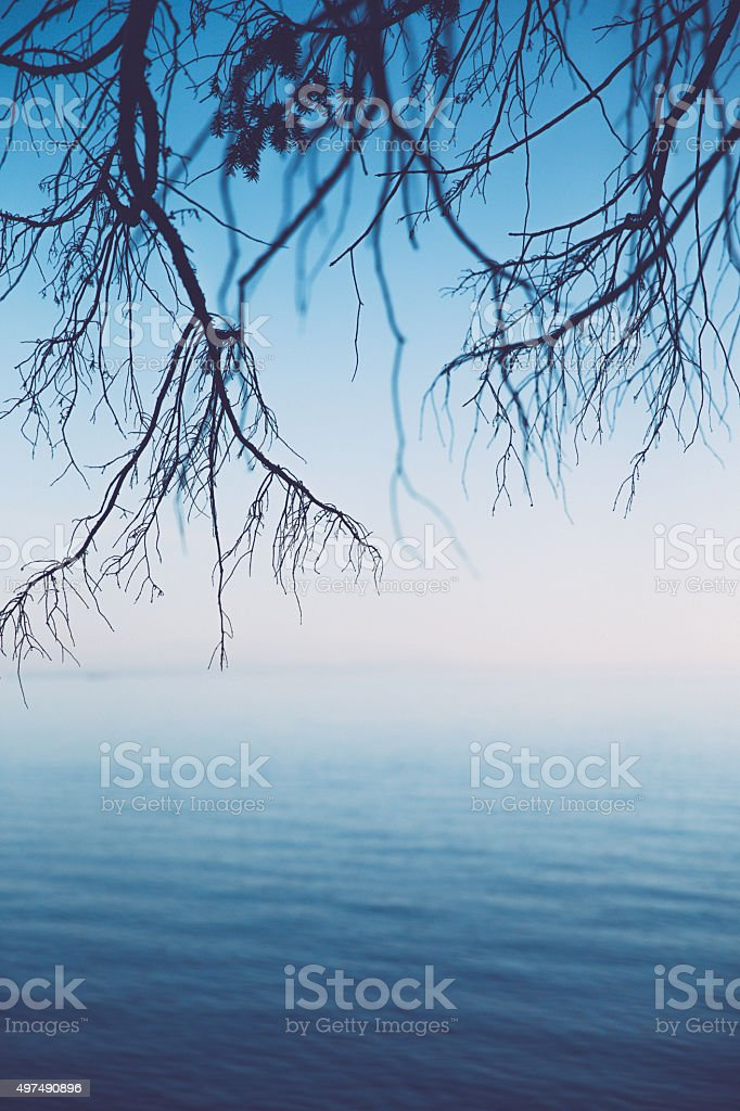Autumn at the sea stock photo