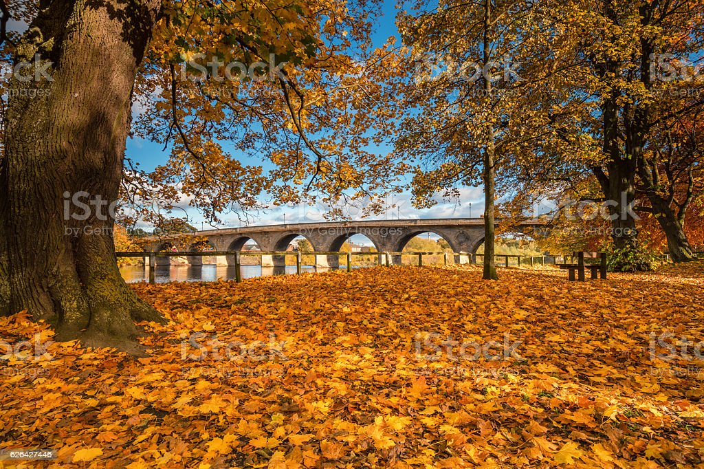 Autumn at the Tyne Green Riverside Park stock photo