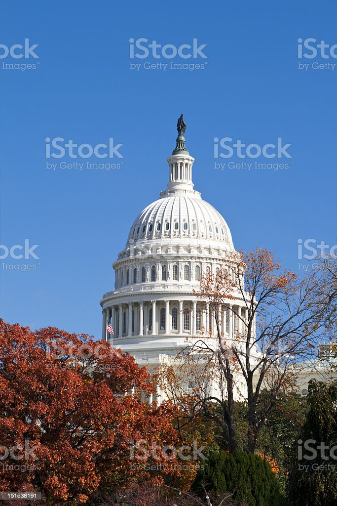 Autumn at the U.S. Capital Building Washington DC Red Leaves royalty-free stock photo