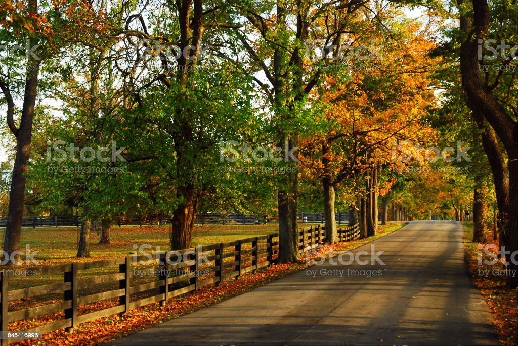 Autumn Back Roads stock photo