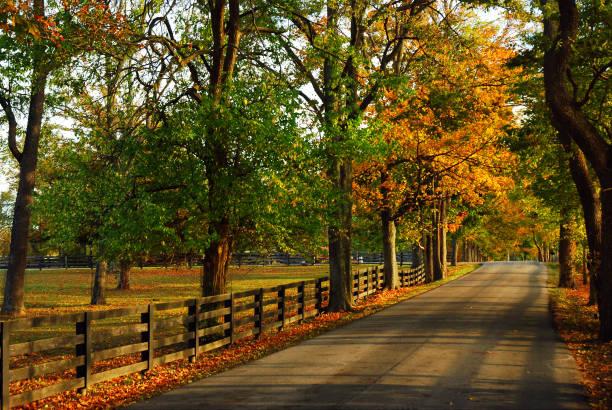 herfst terug wegen - zuidoost stockfoto's en -beelden