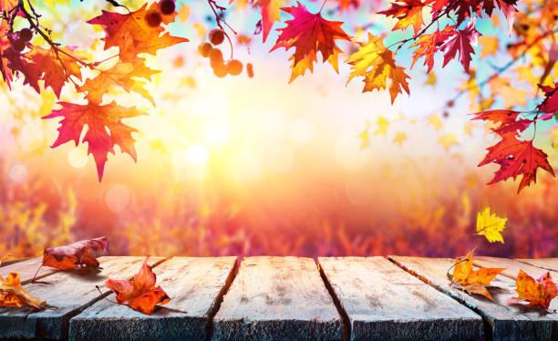 backdrop d'automne - table en bois avec des lames rouges - couleur des végétaux photos et images de collection