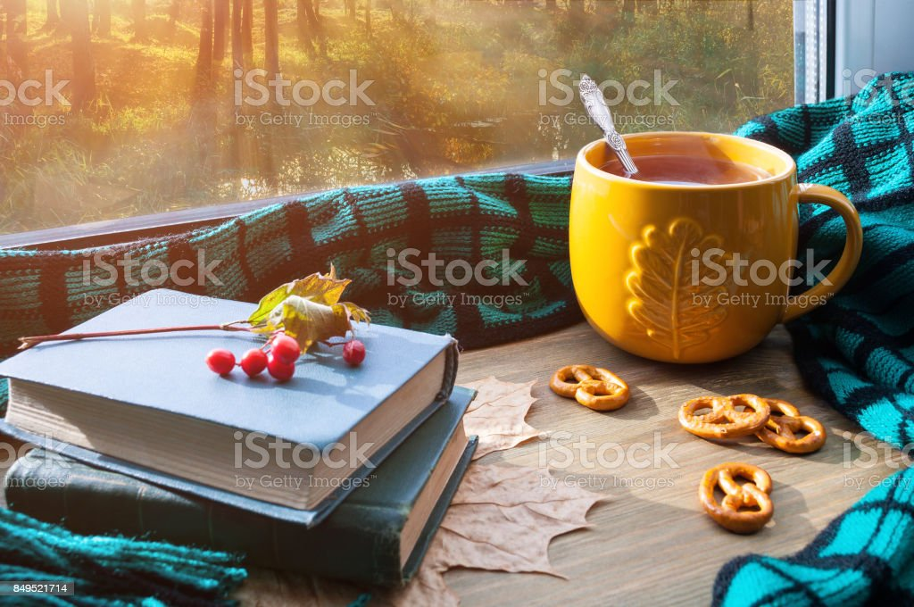 Autumn background. Cup of tea, cookies, books and plaid stock photo