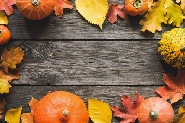 Autumn Background Fallen Maple Leaf Pumpkins Frame Autumn Background Fallen Maple Leaf Pumpkins Frame. Thanksgiving Day Background, Halloween Background, Fall concept. Copy Space For Text. maple leaf photos stock pictures, royalty-free photos & images