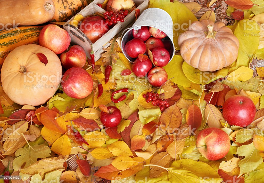 autumn background, fruits and vegetables on yellow fallen leaves stock photo