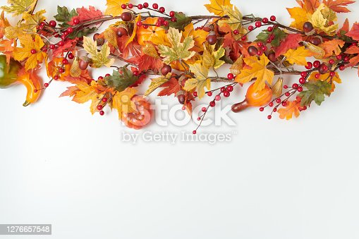 Hello autumn. autumn background with leaves, rowan and pumpkins on white background.