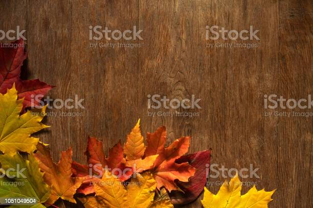Autumn background picture id1051049504?b=1&k=6&m=1051049504&s=612x612&h=na2lb8mqh3fxmcl8qx66d3vno3qdgksfeoe0qxn ml4=