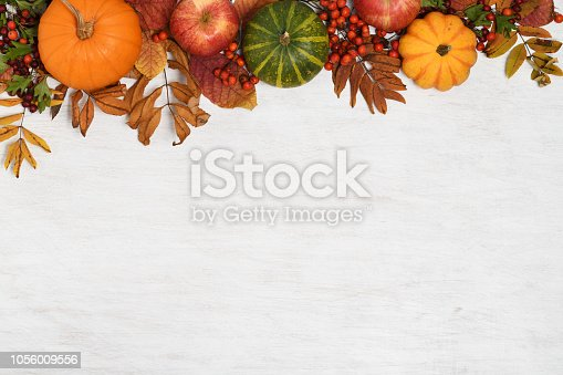 frame of autumnal fruits and vegetables on white wooden background