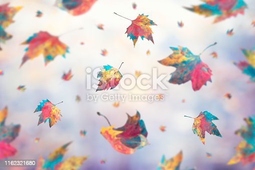 Multi colored falling autumn leaves.