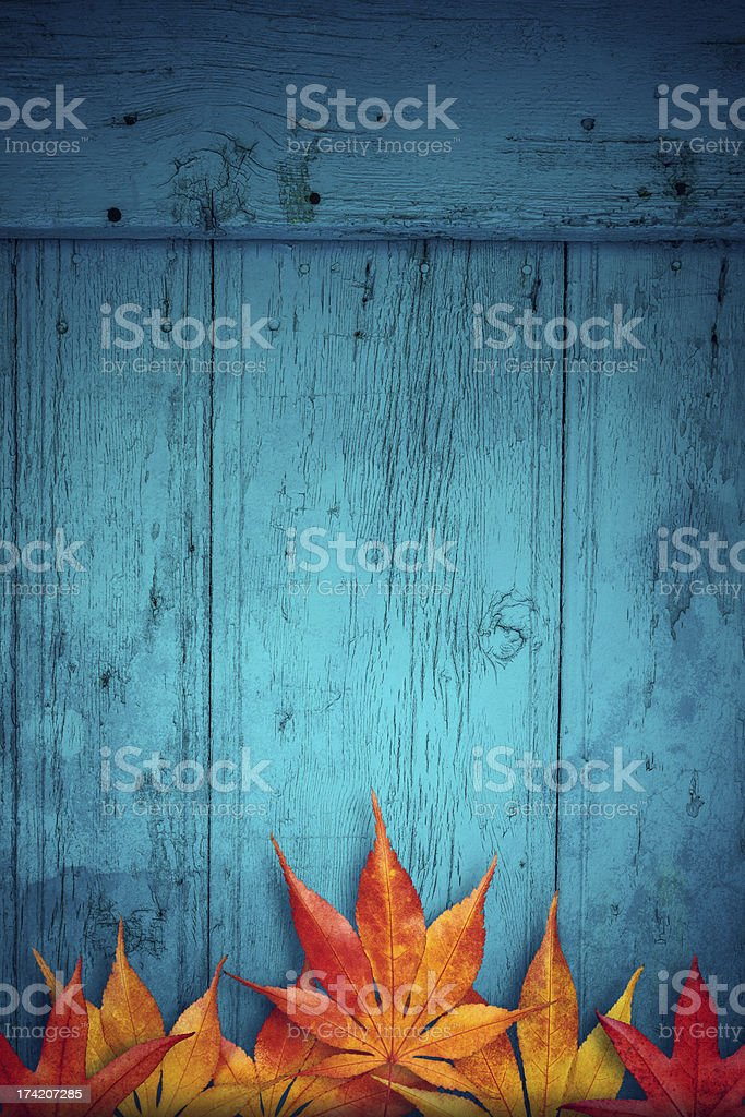 Autumn Background royalty-free stock photo