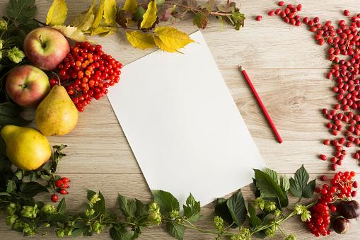 istock Autumn background 491377762