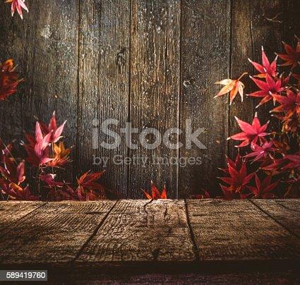 istock Autumn background 589419760