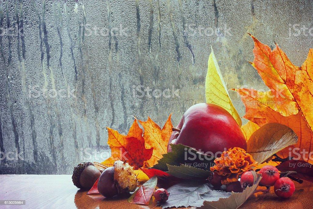 Autumn background, rainy window, colorful leaves