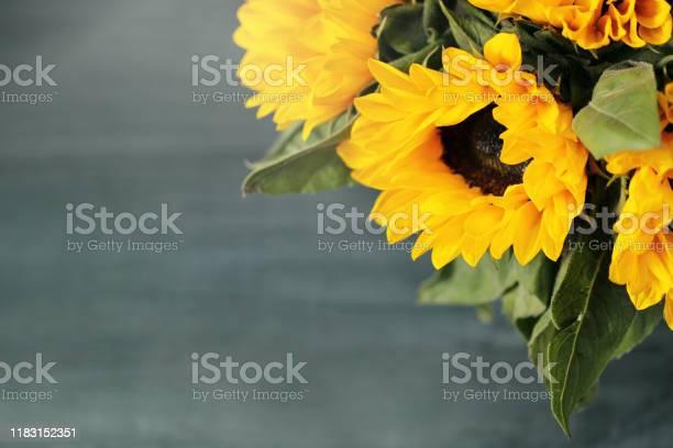 Autumn background with beautiful sunflowers top view picture id1183152351?b=1&k=6&m=1183152351&s=612x612&h=fvuyhy1rur8qwckbbsod jtkh djx3qag1a2 4zo7hm=