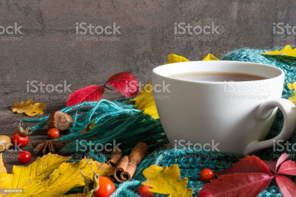 Autumn background with dry leaves, scarf, cup of tea with spices and vintage book stock photo