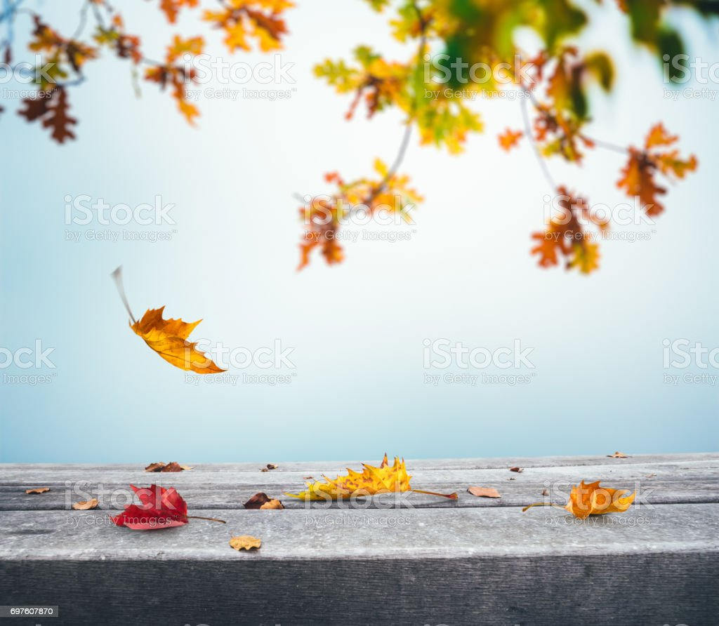 Autumn Background With Falling Leaves - foto stock