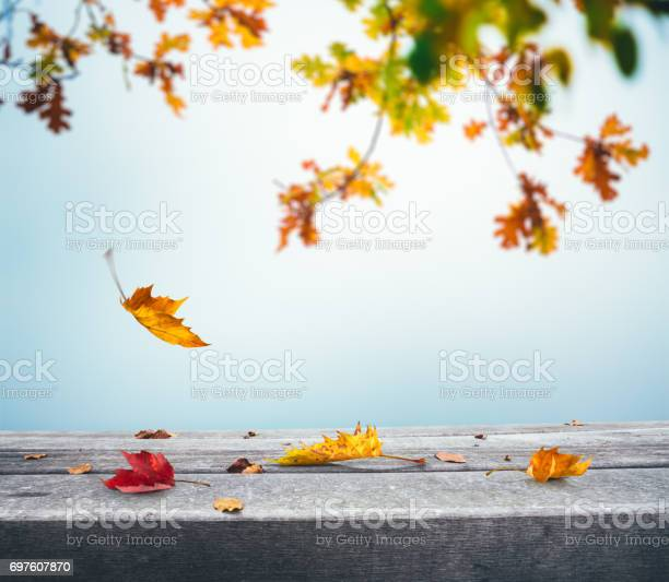 Photo of Autumn Background With Falling Leaves