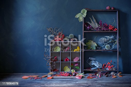 1020586746 istock photo autumn background with leaves and berries 1178564579
