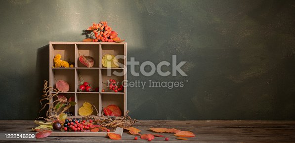 1020586746 istock photo autumn background with leaves and berries 1222546209